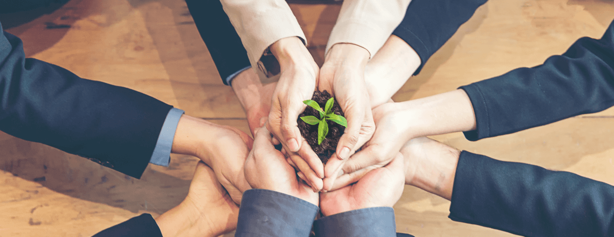Group of business men and women holding soil with little plant together over table